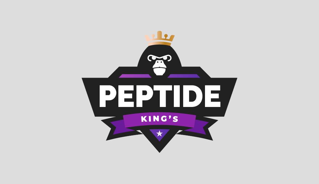 Fourth Dimension Logo   PeptitdeKings   Boise Logo Design