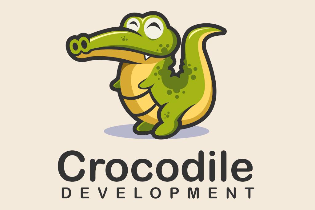 Brand Identity   Boise Logo Design   Crocodile Development