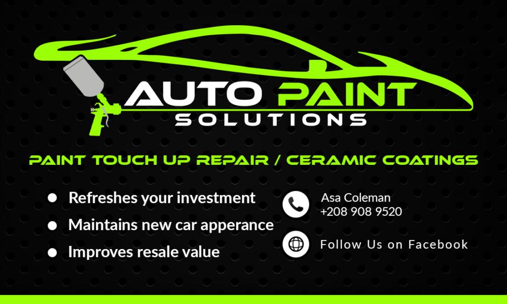 Auto Paint Solutions 1